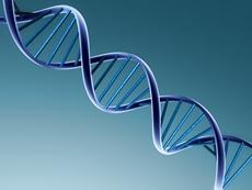 dna-double-helix