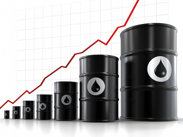 oil share prices