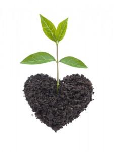 Sustainable_Social_Enterpreneurship