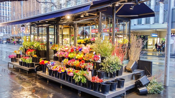 The Startups Taking Over the Floral Industry